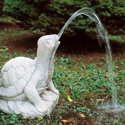 Marmorskildpadde