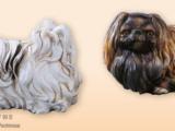 Dyr Pekingeser – hvid Kunststof